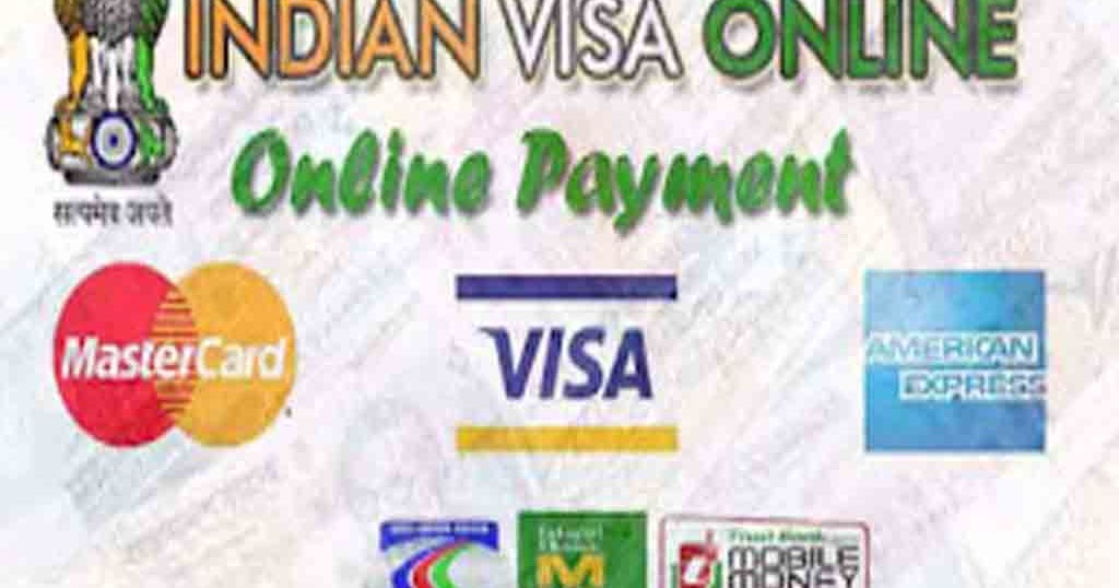 pay the visa application processing fee