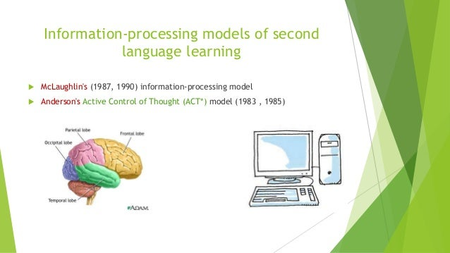 application of information processing theory