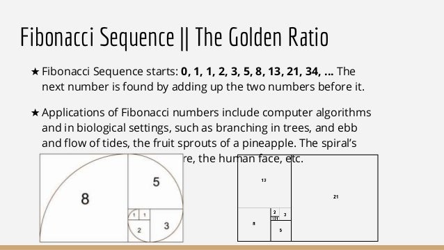 application of golden ratio in human body